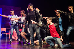 Grease Performance-80