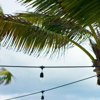 Palm Trees and String Lights, Amanyara Resort