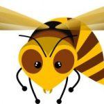 Hornet type