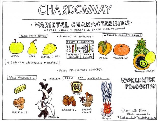 Chardonnay Varietal Notes