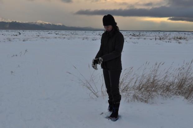 Standing on the Frozen Wetlands
