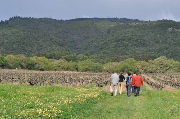 Walking into Bucklin Vineyards