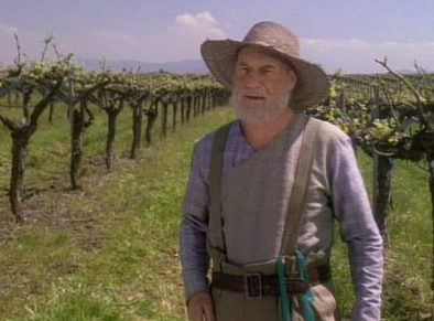 Jean Luc in his vineyards