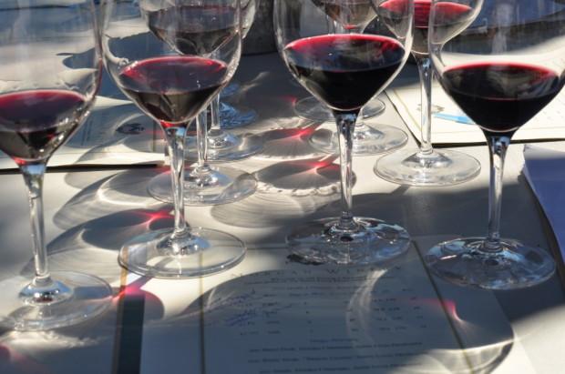 Morgan Pinot clone tasting