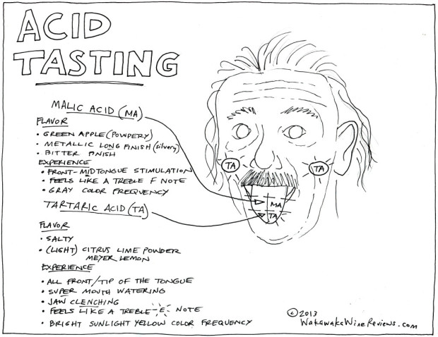 Acid Tasting w Einstein