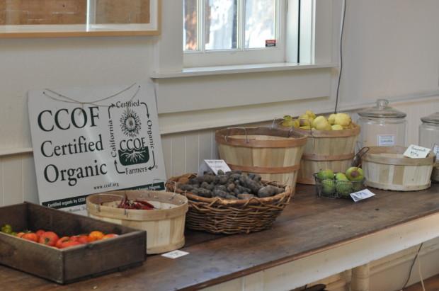 The Preston Farm Store