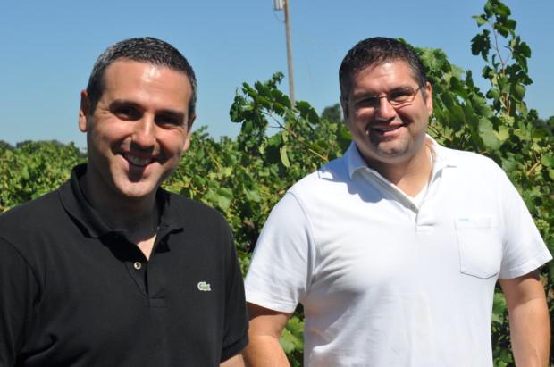 The Perlegos Brothers, Lodi