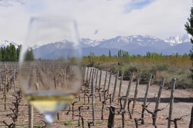 The Andes through White Stones Chardonnay