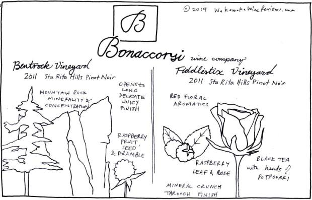 Bonaccorsi Wines