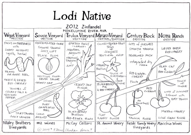 Lodi Native Zinfandel 2012