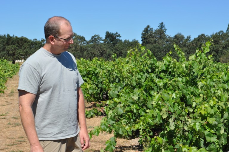 A Morning with Mike Officer, Carlisle Vineyards