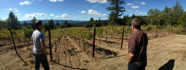 Nathan Kandler and Tommy Fogarty at the top of Gist Ranch Vineyard