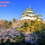 SAKURA in WAKAYAMA-JO
