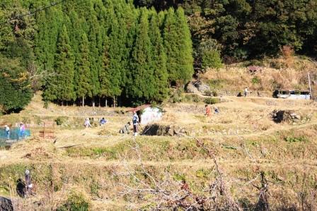 小阪草刈り