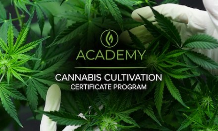 Green Flower Will Now Give You A Cannabis Cultivation Certificate Program
