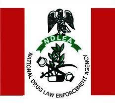 NDLEA (Nigeria Drug Law Enforcement Agency) Seizes 200 kg  of Weed