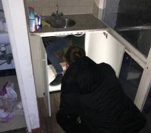 Talk About Kitchen Renovations ! Dutch Police Discover The Way To The Grow House Was Under The Kitchen Sink
