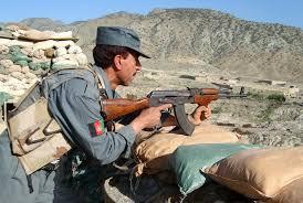 Afghan Police Raid Turns Up 50 Tones Of Raw Hash