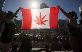 Canada Will Officially Stop Drug Testing Student-Athletes for Weed