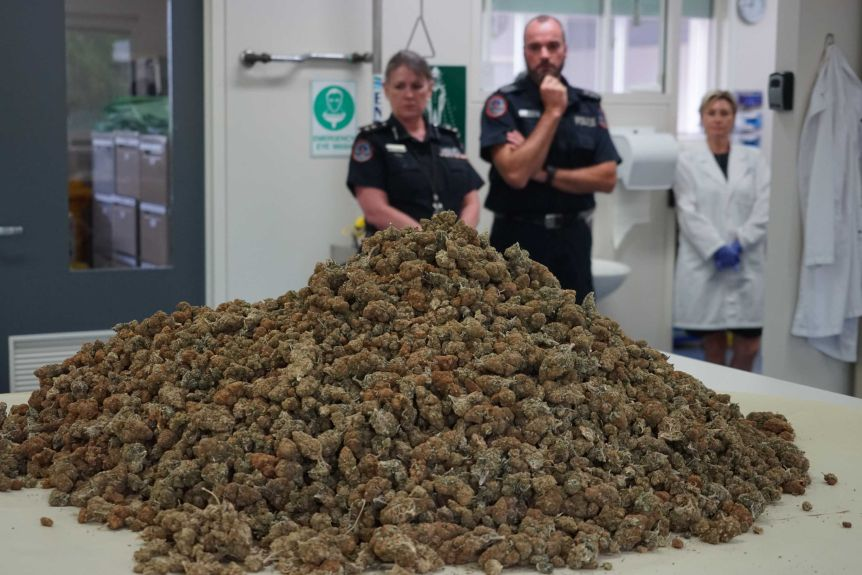 Australia – NT Police seize $2 million of cannabis smuggled via freight as traffickers adapt to COVID-19 restrictions