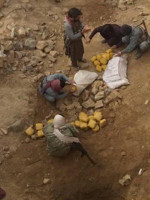 Afghanistan- CNPA Seizes 100kgs of Hashish, Arrest 1