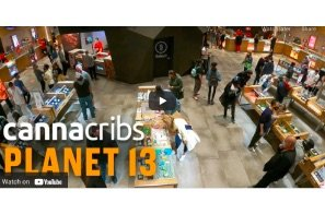 Largest Cannabis Dispensary in World: Planet 13, Las Vegas
