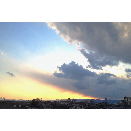 なにか顔を出してるような… #sunset #iphonography #instagram #iphone4s