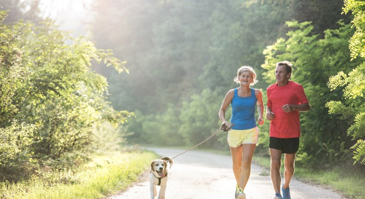 Active senior couple with dog running outside in green sunny nature