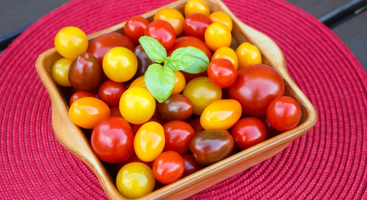 Different sorts of tomatoes served on a cerami dish. Healthy eating or vegetarian concept.