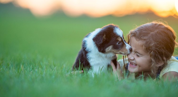 puppy-grass-little-girl-GettyImages-615492472