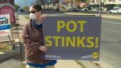 anti pot protests