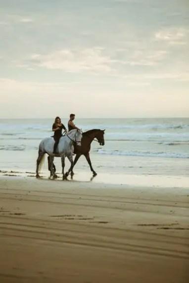 horse-beach-1