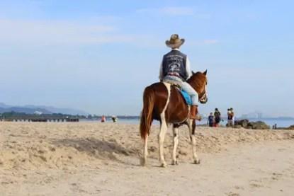 horses-3325624