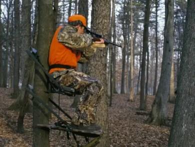 hunting-deer-8