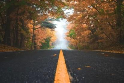 Best road trip drives 2021