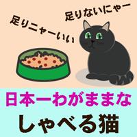 日本一わがままなしゃべる猫