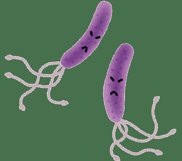 紫のピロリ菌のイラスト