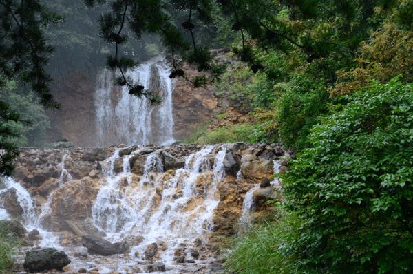 チャツボミゴケ公園の写真