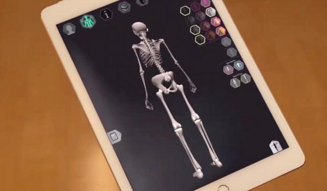 3dbodylaboアプリデータ骨