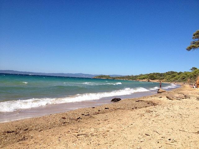 夏休みの海