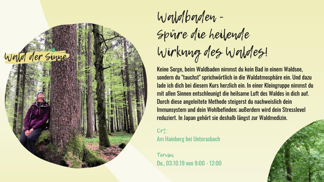 Waldbaden - Spüre die heilende Wirkung des Waldes
