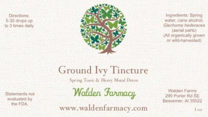 Ground Ivy Tincture