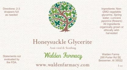 Honeysuckle Glycerite