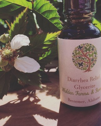 Diarrhea Relief Glycerite