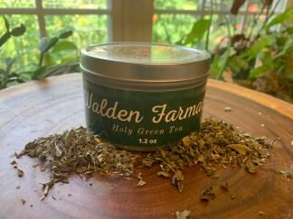 Holy Green Tea