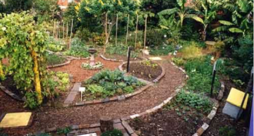Stop Landscaping, Foodscape Instead