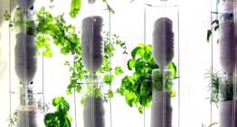 A vertical garden in your apartment built through distributed DIY