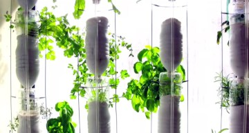 A vertical garden in your apartment built through distributed DIY