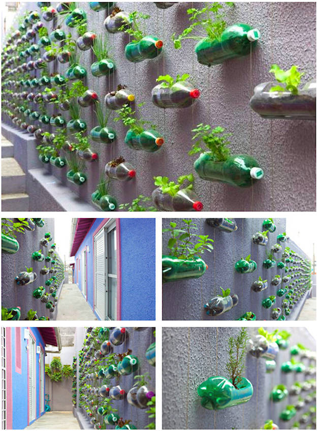 Vertical Gardening Ideas vertical gardens ideas pictures patiofurn home design ideas Bottle Garden