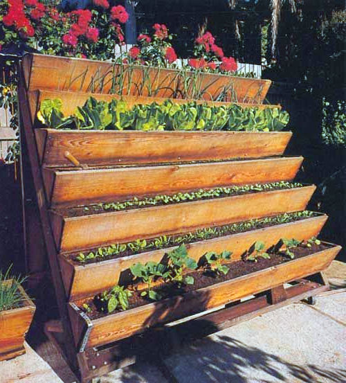 Here Is An Old Staircase Transformed Into A Wonderful Vertical Gardening  System. The Stair Steps Provide A Good Way For Excess Water To Drain Off  Down The ...